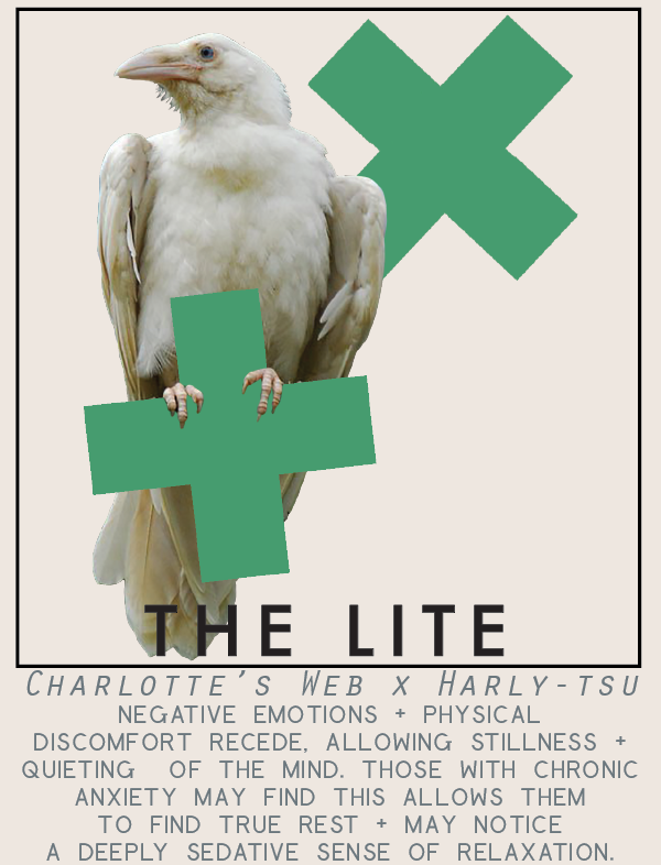thelite-01.png
