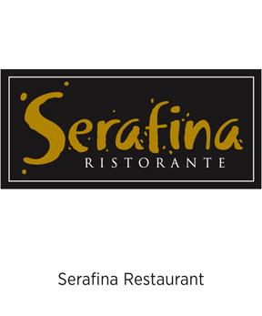 dg-web-branding-Serafina1.jpg