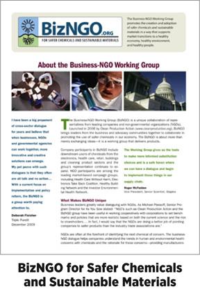 dg-web-facts-cpa-bizngo-dg2.jpg