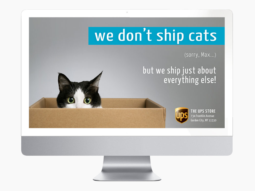 We Dont Ship Cats