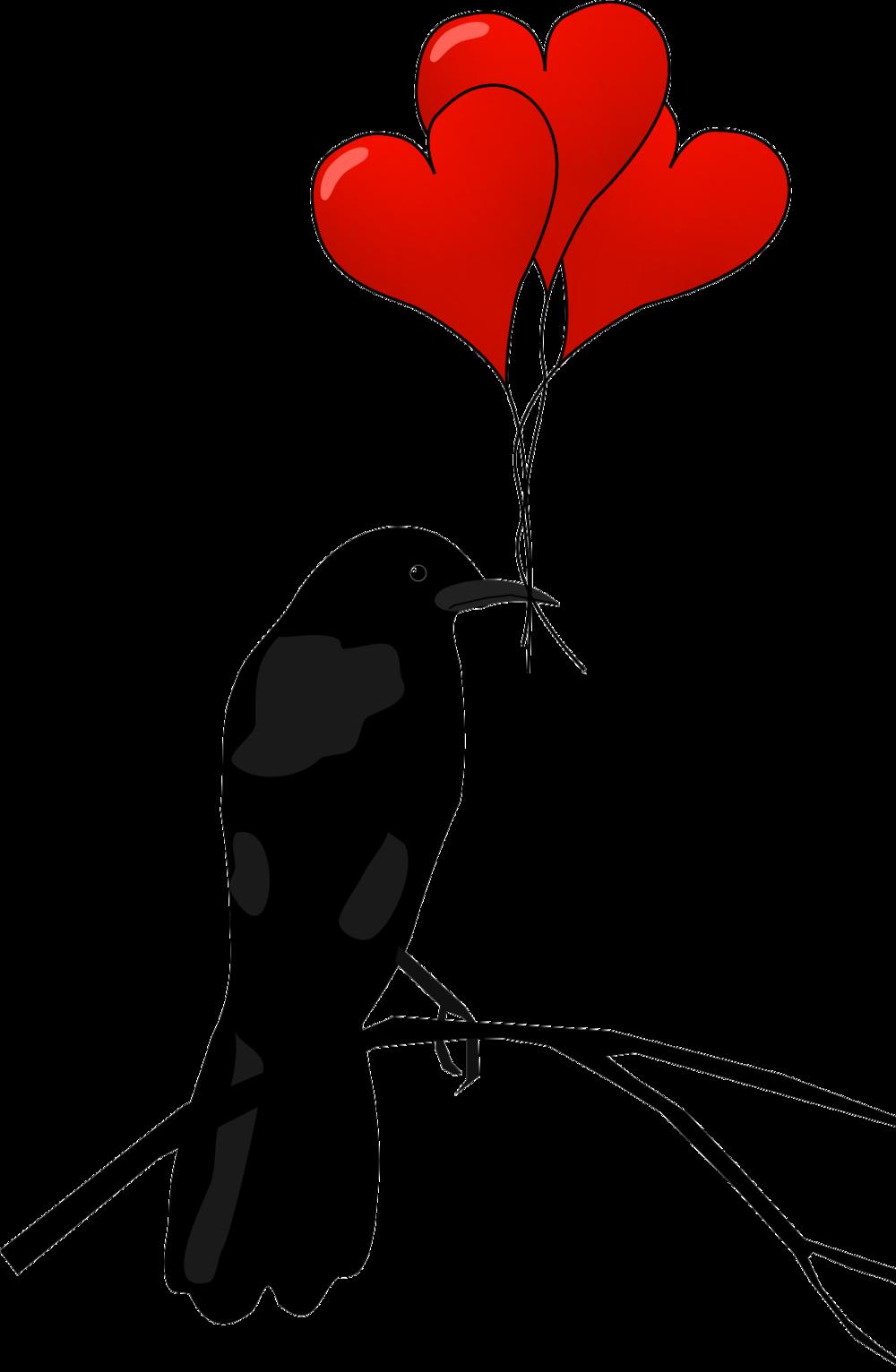 hummingbird-clipart-heart-6.png
