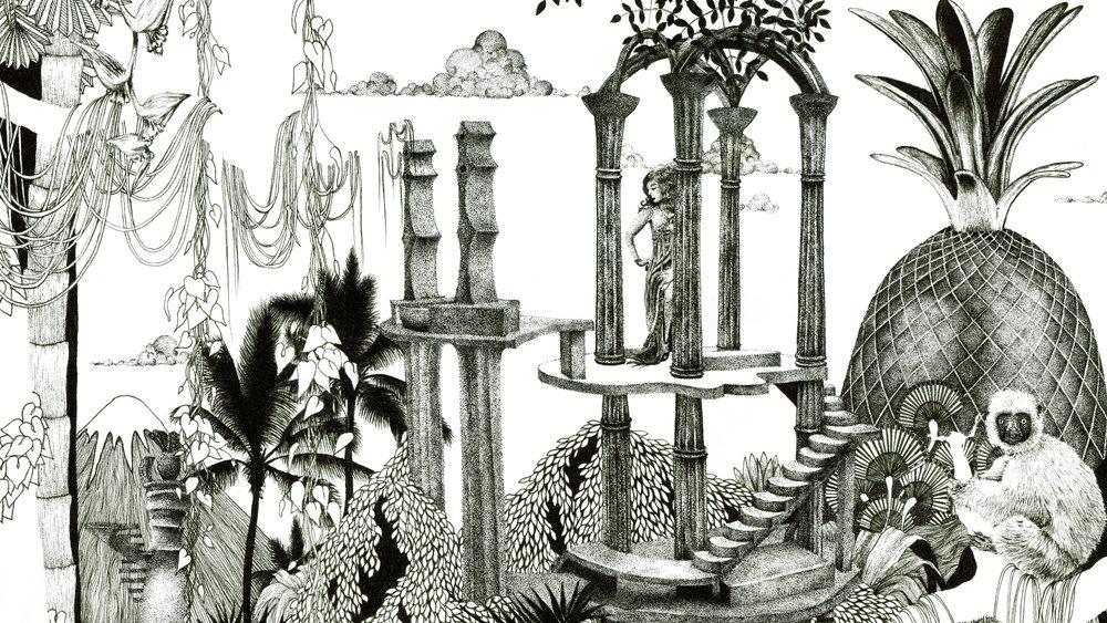 pineapple black and white illustration botanical art prints