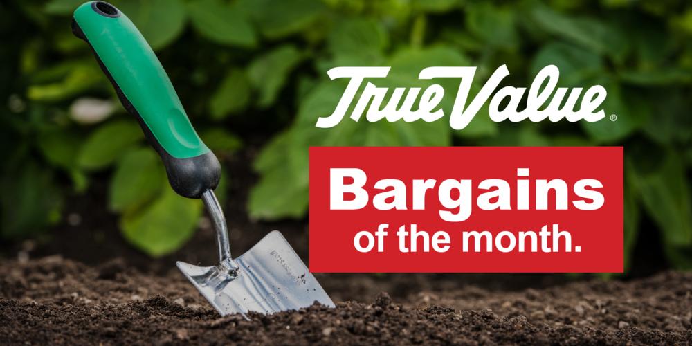 True Value Bargins of the month.png