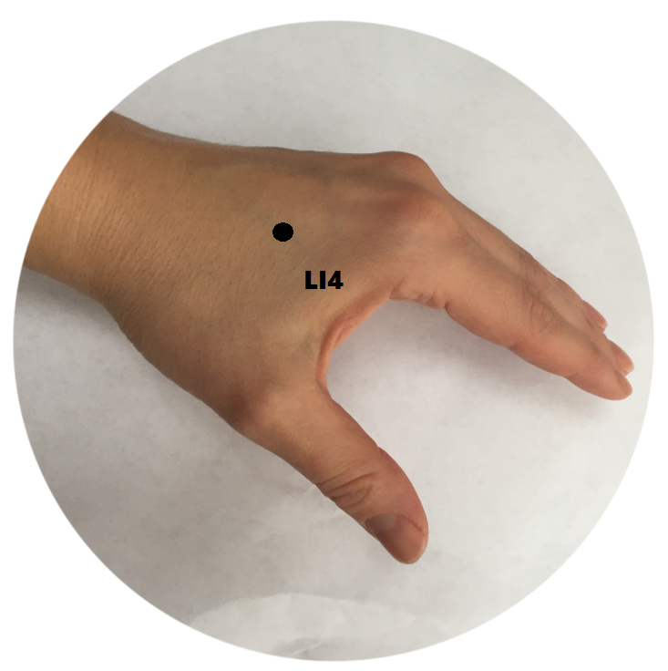 Acupuncture Point Large Intestine 4