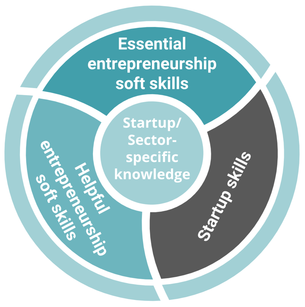 Entrepreneurship Skills - After over a decade of experience conducting trainings in entrepreneurship skills we've found over and over that entrepreneurship skills are employability skills. Employability skills are leadership skills. And leadership skills are life skills.LinkedIn research has validated our observations showing that the majority of employers are looking for entrepreneurial skills.This is not a coincidence.