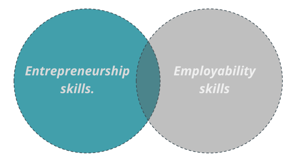 The perception of employability skills -