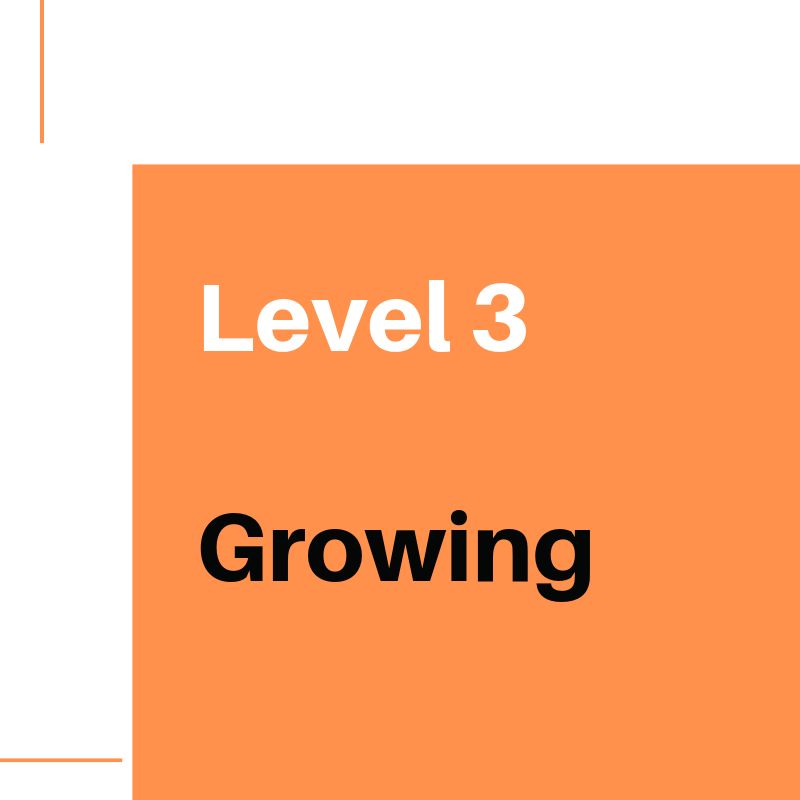 Level 3 Growing (1).png