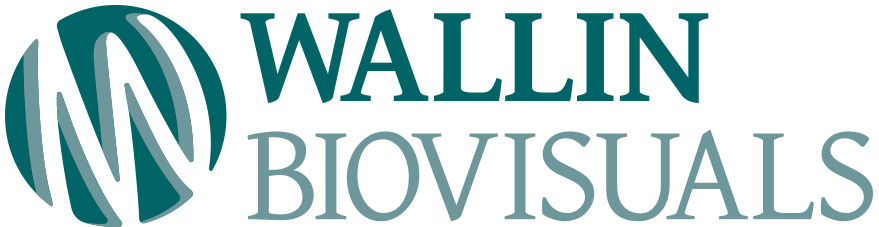 Wallin Biovisuals