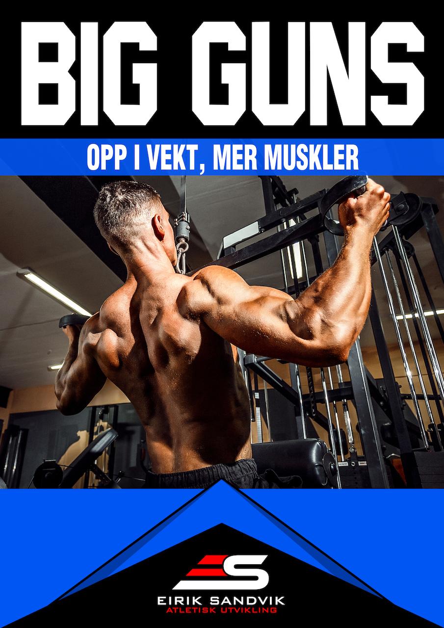 BIG GUNS - Fokus: Muskelvekst og styrke