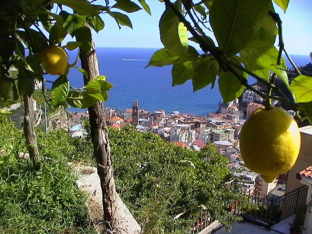 panorama vista dal limoneto.jpg