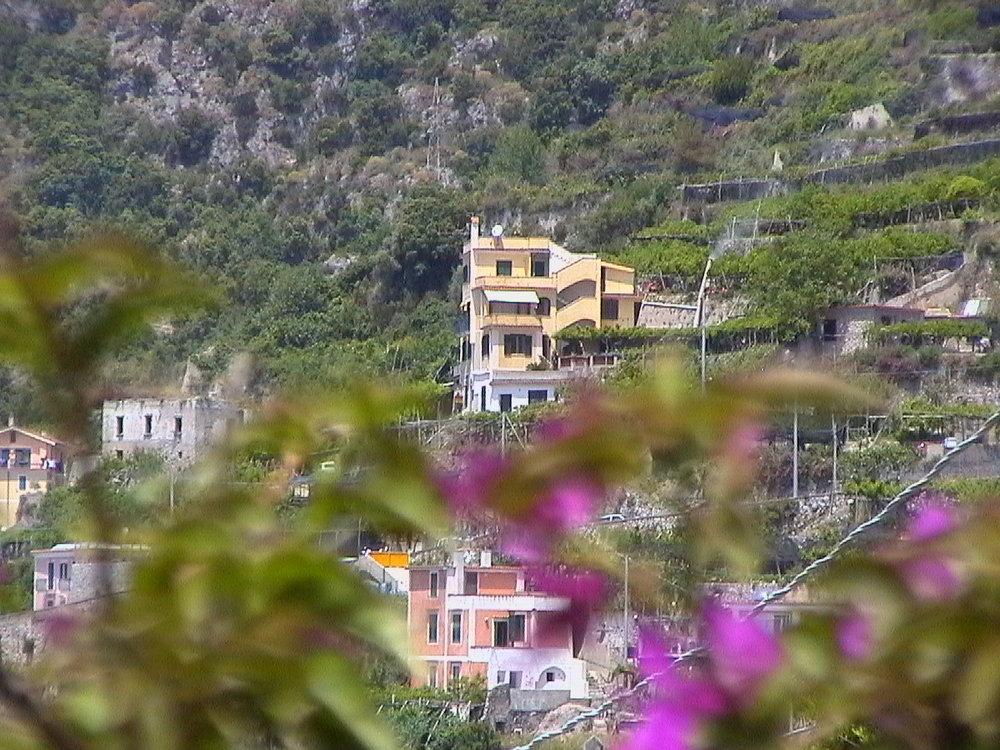 casa e fiori.jpg