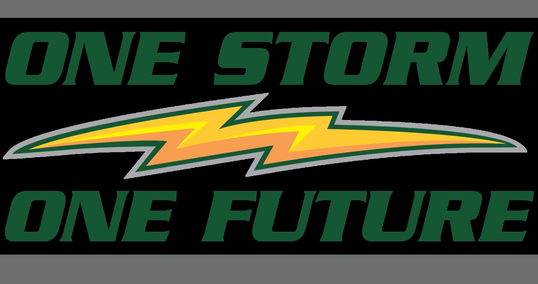 Sauk Rapids-Rice Middle School — One Storm One Future