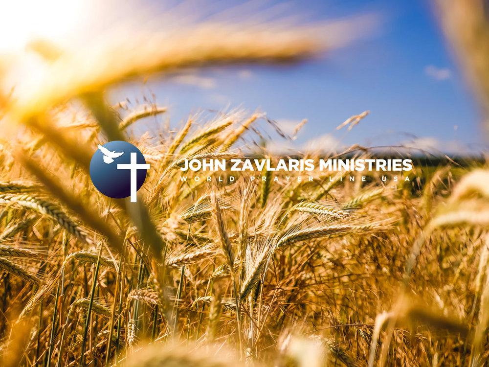 wheat field.jpg