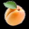 Apricot - 480x480.png