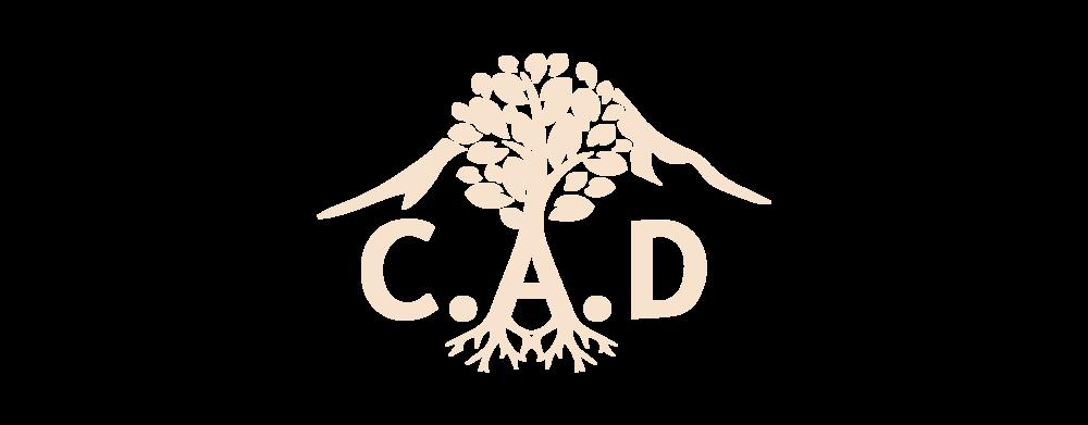 Sponsor_CAD.png