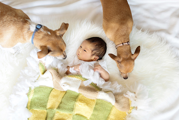 sanaz photography-newborn photography-hudson9