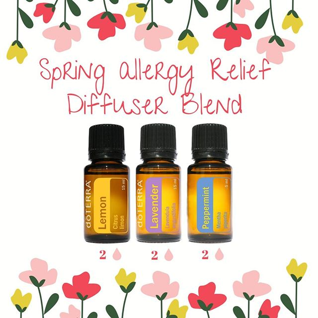 If the pollen count has you feeling miserable use this Spring Allergy Relief Diffuser Blend.⠀⠀⠀⠀⠀⠀⠀⠀⠀ ⠀⠀⠀⠀⠀⠀⠀⠀⠀ · Lemon oil supports lymphatic system drainage and helps with overcoming respiratory conditions.⠀⠀⠀⠀⠀⠀⠀⠀⠀ · Lavender supports healthy response to seasonal threats⠀⠀⠀⠀⠀⠀⠀⠀⠀ · Peppermint acts as an expectorant and provides relief for allergies.