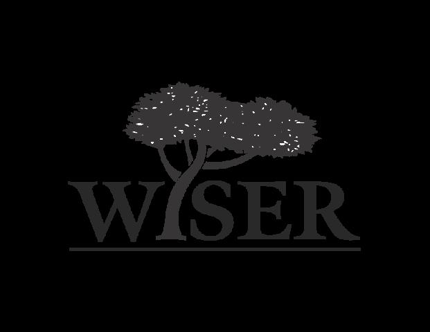 WISER+International+Logo.png