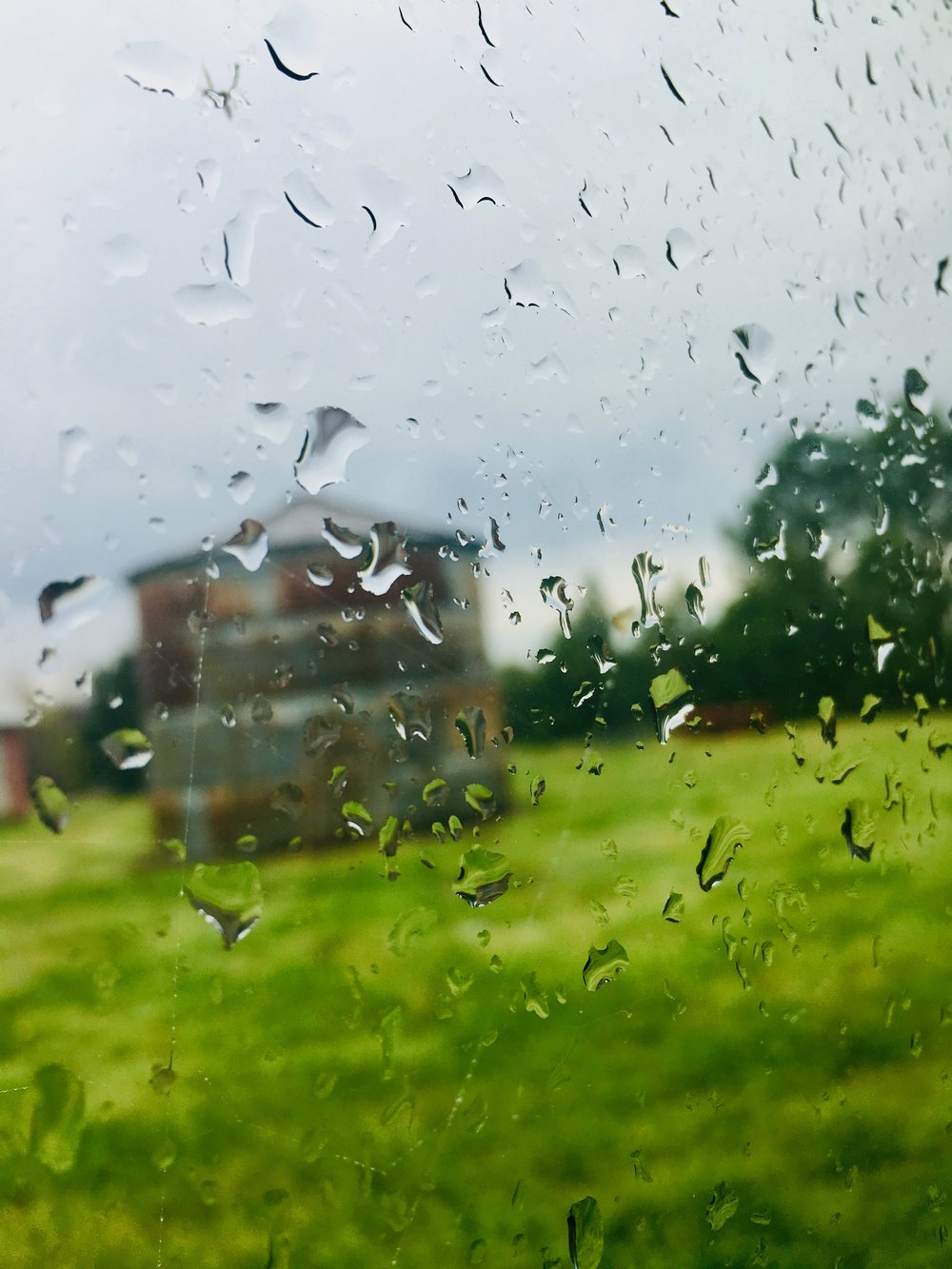 Spring Rains - While writing this lesson, the sky turned blue, the thunder rolled, and warm rain splattered the windows, all playing a delightful melody. Now I want a nap.