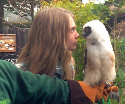CARA AND THE OWL