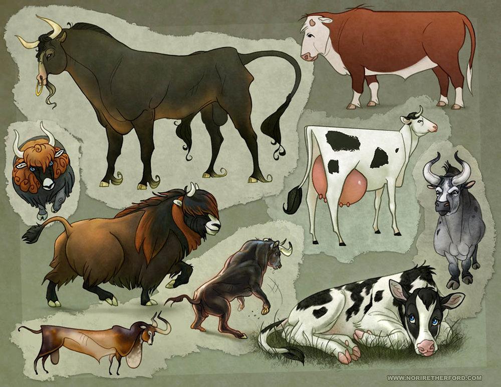 Cattle Designs