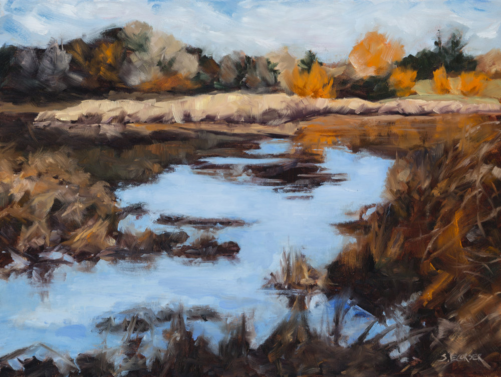 Jericho Ponds