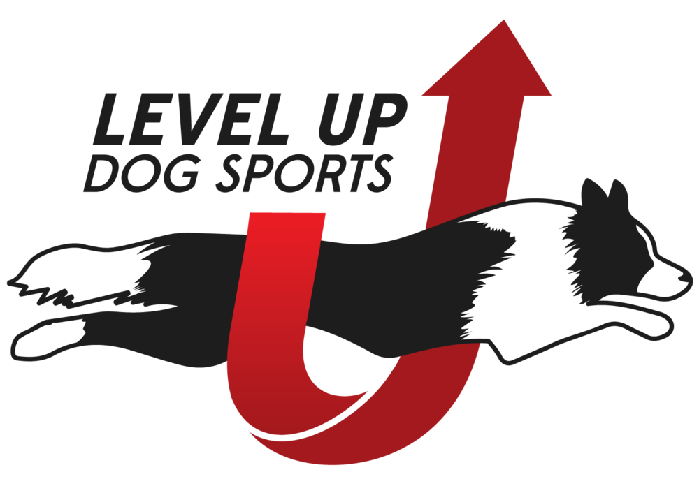 LevelUp-Branding-Final-01.png