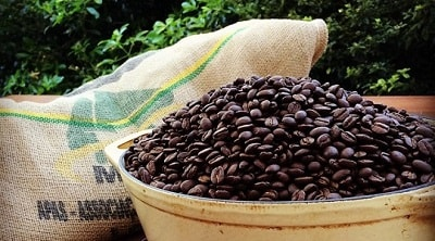 Coffee Beans - Freshness and Storage