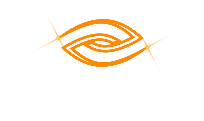 NewLight Investigations LLC