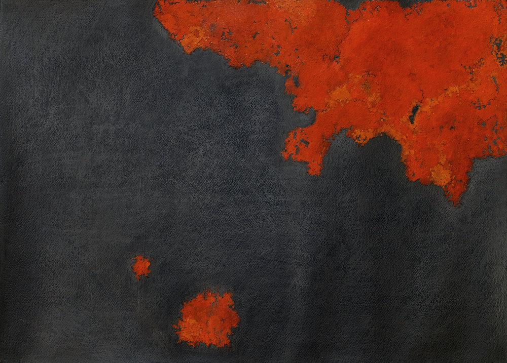 "Rust Lichen , Oil paint and Graphite, 22"" x 30"" 2010"