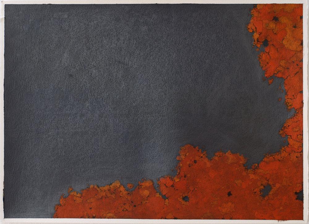 """Rust Lichen No. 2  Oil Paint and Graphite, 22"""" x 30"""" 2010"""