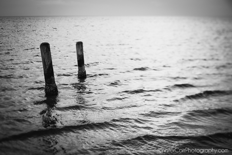 black and white photography of pilings in water at the pamlico sound in hatteras island