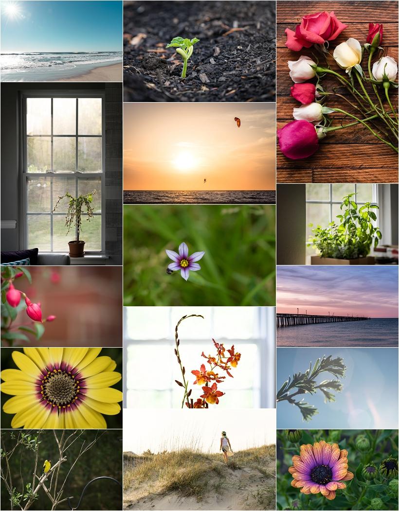 virginia beach photographer, nature photography fine art landscape photography