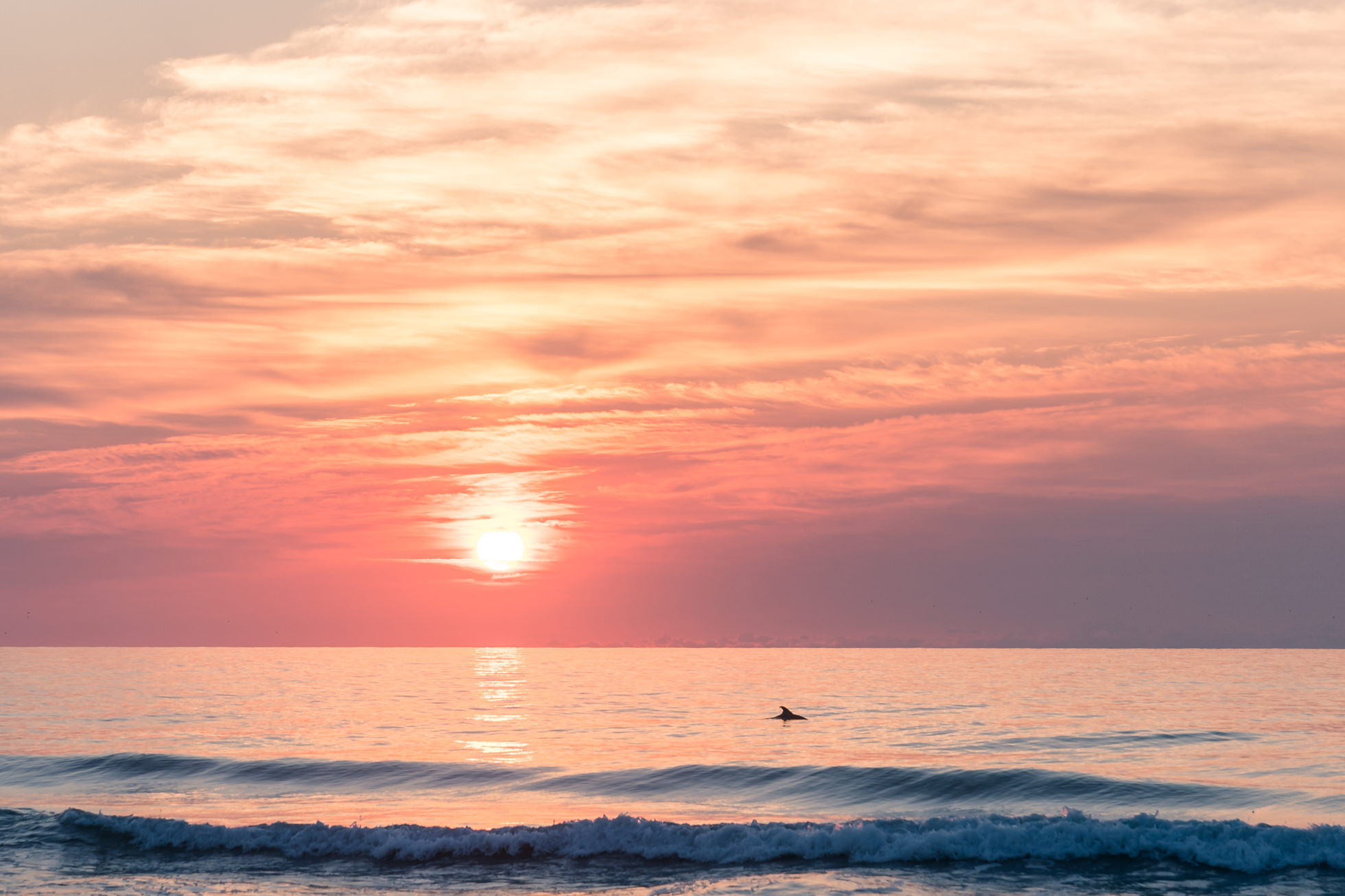 sunrise, avon, north carolina, outer banks, dolphin, cape hatteras