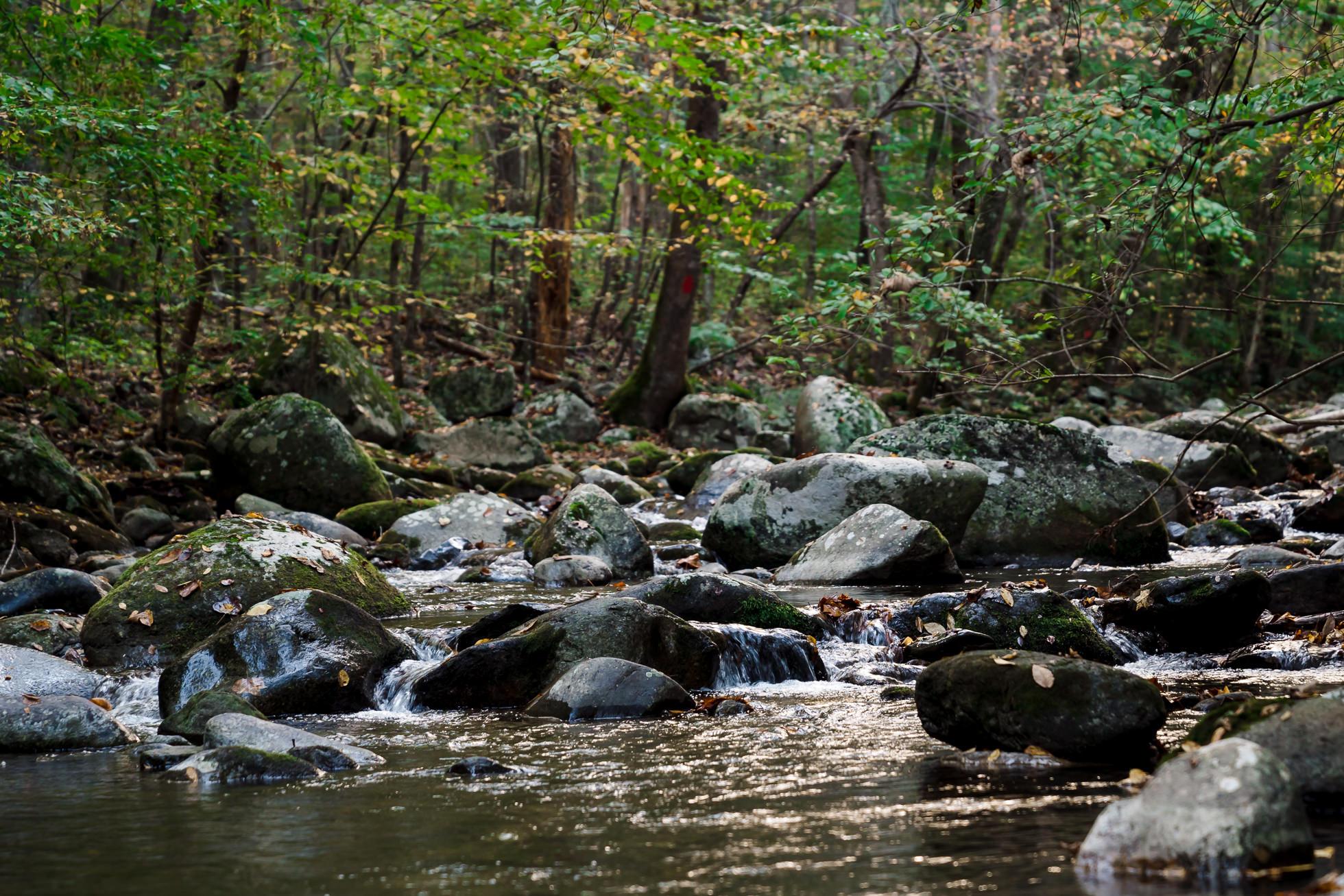 crabtree falls campground stream, tye rive