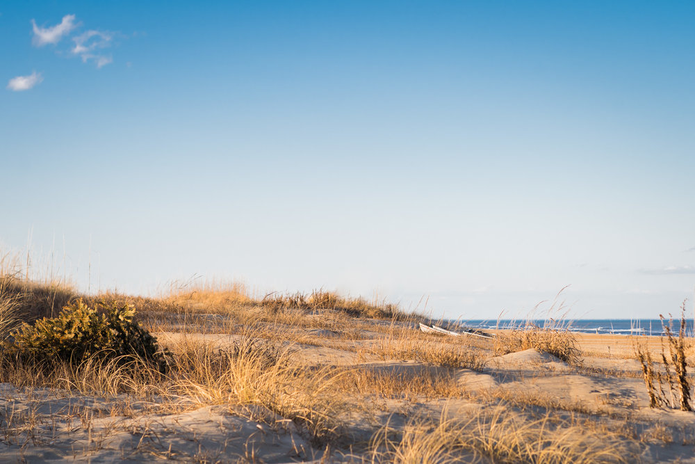 beach, virginia beach photography, nature photographer, hobie cat