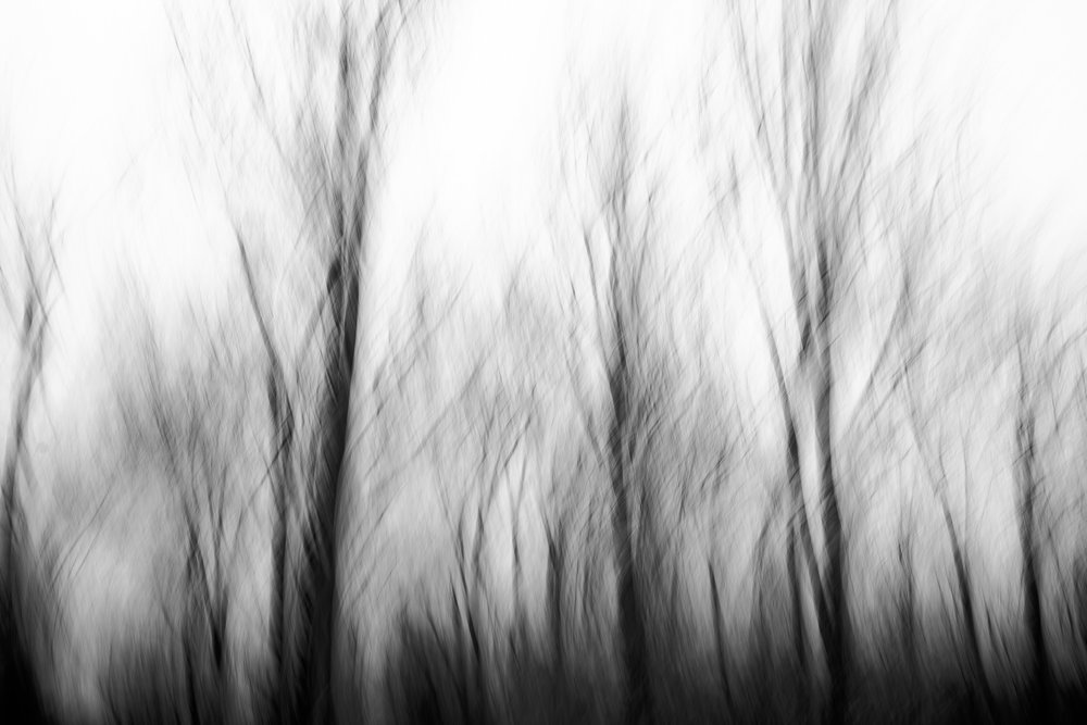 black and white photography, vertical panning photography technique