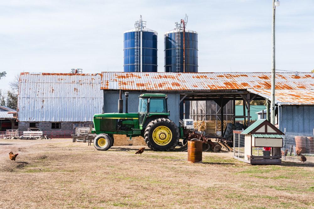 chesapeake, va, bergey's breadbasket, dairy farm