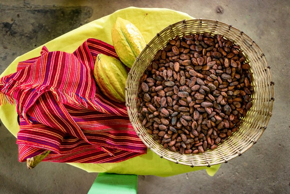 2018.05.03 Kacaw Chocolate Belize © Jennifer Carr Photography-7.jpg