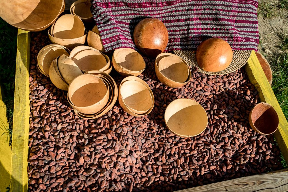 2018.05.03 Kacaw Chocolate Belize © Jennifer Carr Photography-13.jpg