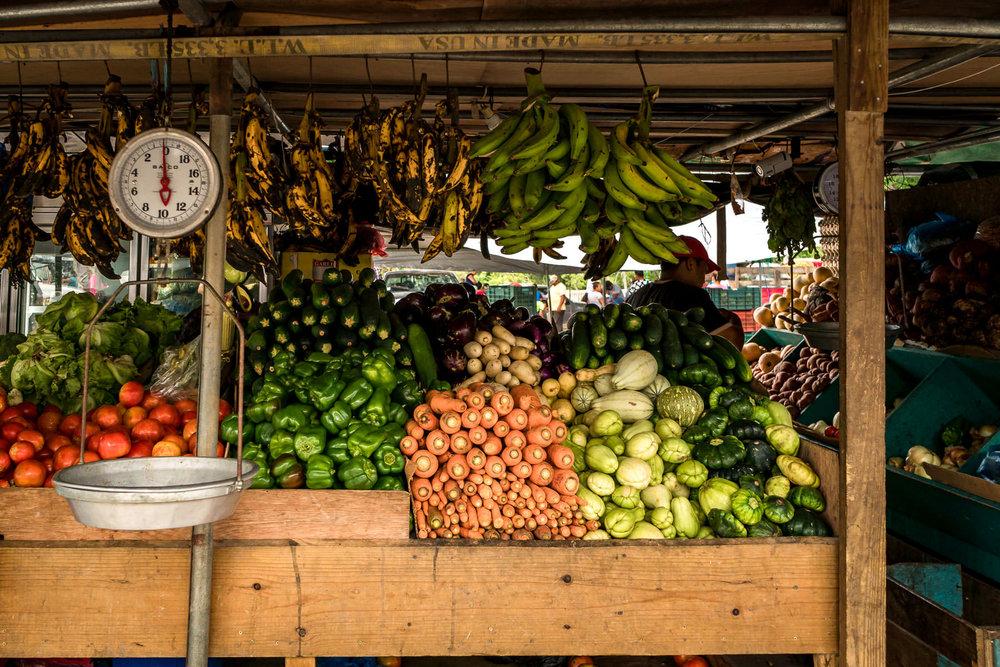 2018.05.03 San Ignacio Belize © Jennifer Carr Photography-11.jpg