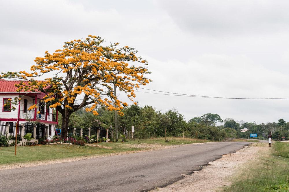 2018.05.06 Hidden Valley Inn Cayo Belize © Jennifer Carr Photography Virginia Beach-35.jpg