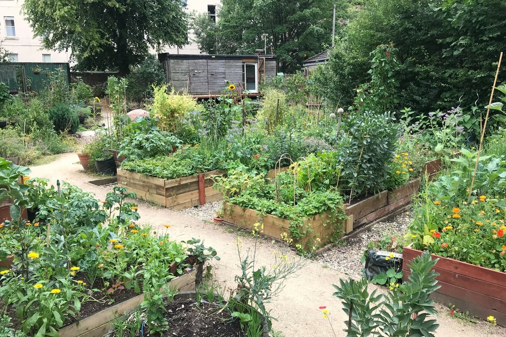 Woodlands Community Garden -