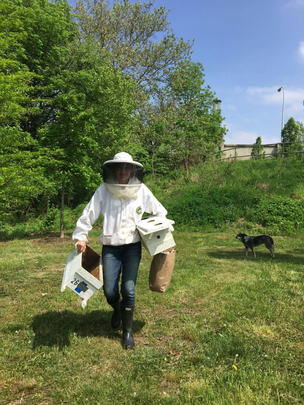 Pollinator Project founder, Chelsea, after a bee colony installation. (Juni carefully observing in the background)
