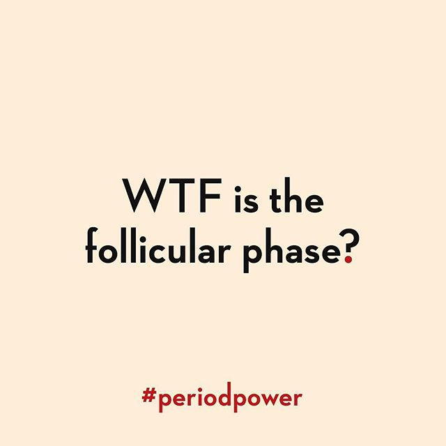 Let's get on to the nitty-gritty of the follicular phase, so-called because it's when your follicles - each of which houses an egg - grow and mature and one egg (sometimes two) is released at ovulation 🥚 ⠀⠀⠀⠀⠀⠀⠀⠀⠀ This is the phase that runs from day one of your period all the way through to ovulation, and it's the length of this phase that determines the length of your cycle because the luteal phase (which runs from ovulation to the start of your period) is more fixed in length, at around 14 days. ⠀⠀⠀⠀⠀⠀⠀⠀⠀ So, if you're someone who ovulates on day 10 of your cycle, then you'll have a cycle that's around 24 days long. If you ovulate on day 14, your cycle will be around 28 days, and if you ovulate on day 22, then your cycle will be 36 days long. ⠀⠀⠀⠀⠀⠀⠀⠀⠀ If you have irregular cycles, then knowing how to identify when you ovulate will help you to know when your period is due so that you can plan your life 📅 And if you're trying to get 🤰🏽 then this information is even more valuable. ⠀⠀⠀⠀⠀⠀⠀⠀⠀ At the start of the follicular phase your hormone levels are low, then they gradually increase, and just before ovulation they reach a peak. The follicular phase is oestrogen dominant and it's oestrogen that makes your skin clear up, your features more symmetrical (yes, really), increases cervical fluid production, makes you interested in other people and having conversations with them (because Mother Nature needs you to be chatty and procreate, even if you have no intention of breeding). And it's oestrogen that plumps up the lining of your womb so that if you were to conceive, an embryo has somewhere plush and nourishing to implant. ⠀⠀⠀⠀⠀⠀⠀⠀⠀ All clear? Tomorrow we'll get into some juicy details 💧 ⠀⠀⠀⠀⠀⠀⠀⠀⠀ #periodpower #fertility #infertility #wellness #womenshealth #womenswellness #hormones