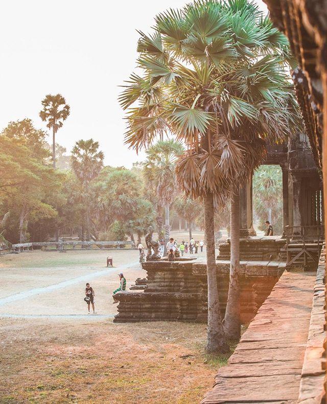 Wait, did I mention the sunsets?👌   #outofthisworld #sunsets #dusk #travel #cambodia #serenity