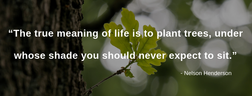 """""""The true meaning of life is to plant trees, under whose shade you should never expect to sit."""".png"""
