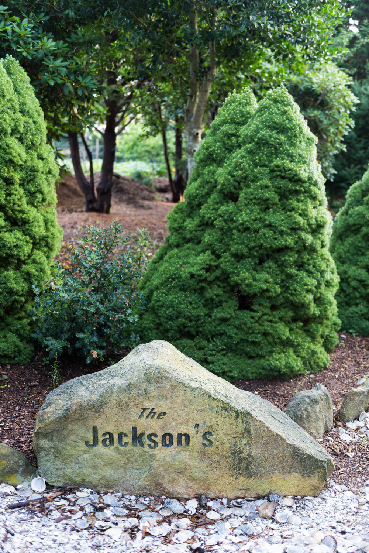Jackson1-1.jpg
