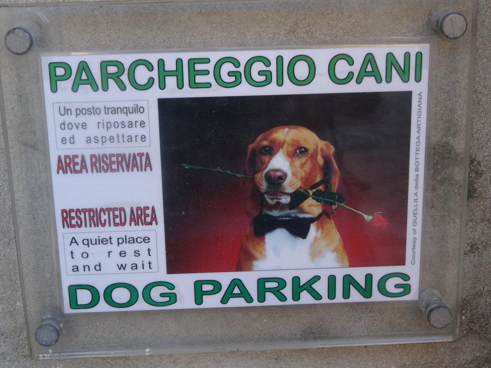 Dog-parking-Tropea.JPG