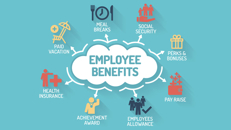 BENEFITS - Xlcon offers Full-time employees and their spouse/dependents a package of medical, dental, and vision benefits. Xlcon covers each employee with a Life Insurance and Long Term Disability package (ask for details). Employees have the option of purchasing additional Mercer Voluntary Benefits. resumes@xlcon.com